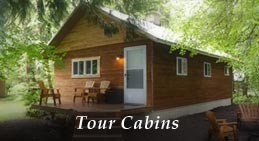 Mounthaven Resort's Mt. Rainier Lodging includes cabins