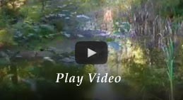 Play video of the Mt. Rainier Lodging at Mount Haven Resort